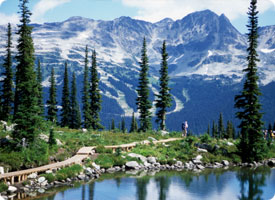 Whistler Blackcomb BC